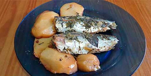sardinha12b1
